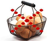 eggs-in-one-basket-185.jpg