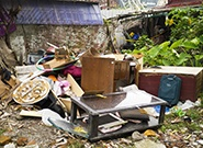 time-for-everyone-to-clean-up-their-own-backyard-185.jpg